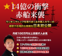 大陸式中国輸入の秘密公開キャンペーン.PNG