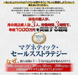 マグネティック・セールスストラテジーの秘密.jpg