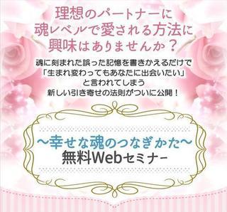 幸せな魂のつなぎかた無料Webセミナー.jpg