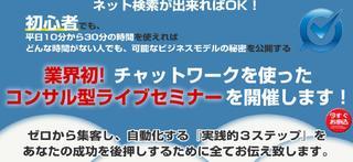 業界初コンサル型ライブセミナー.jpg