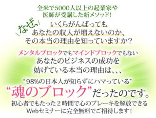 魂のブロック解放無料Webセミナー.PNG