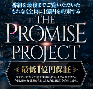 THE PROMISE PROJECT.PNG
